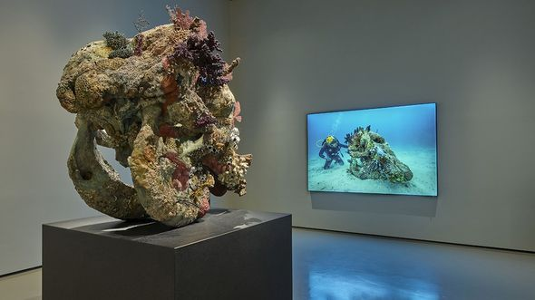 Damien Hirst opens major solo exhibition in Venice