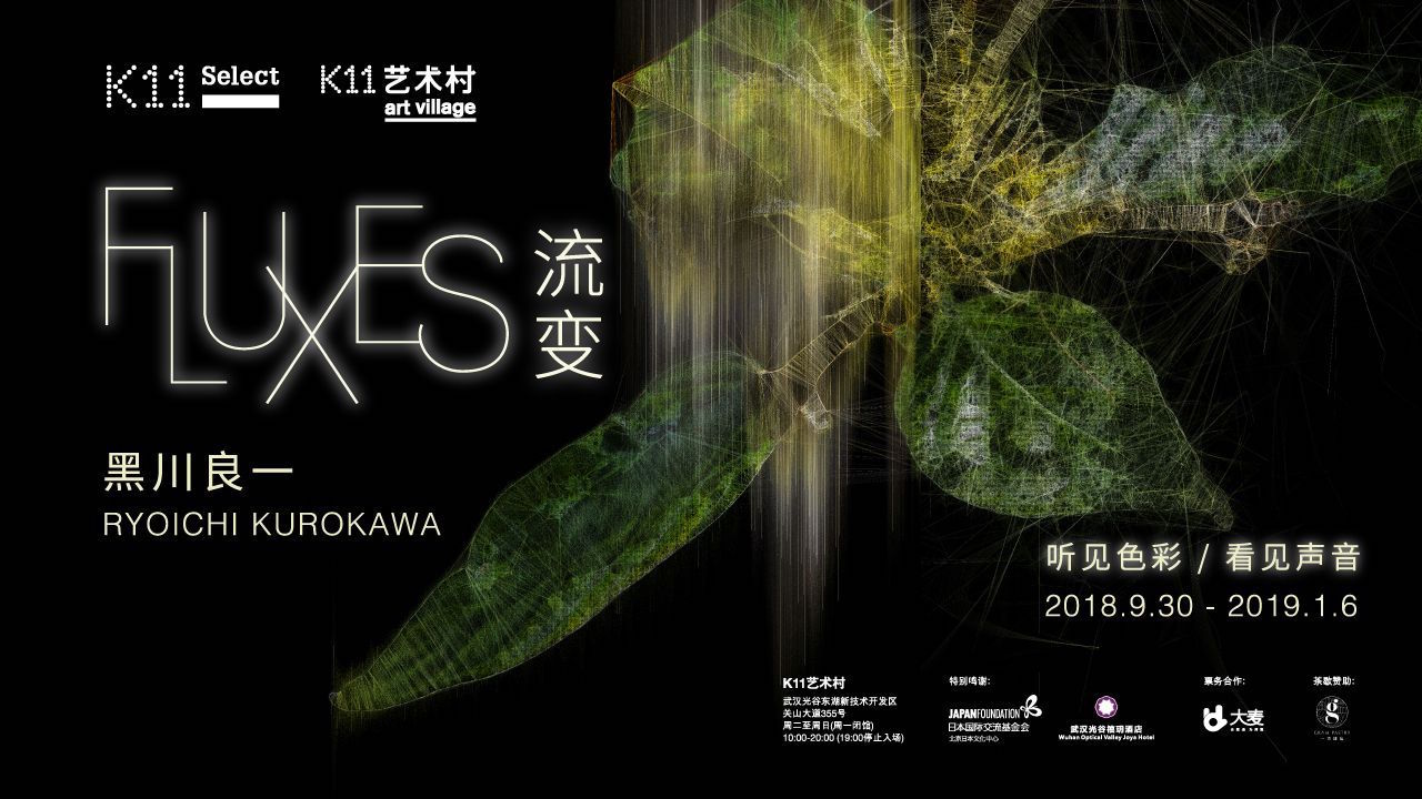 Fluxes, New Exhibition by Ryoichi Kurokawa