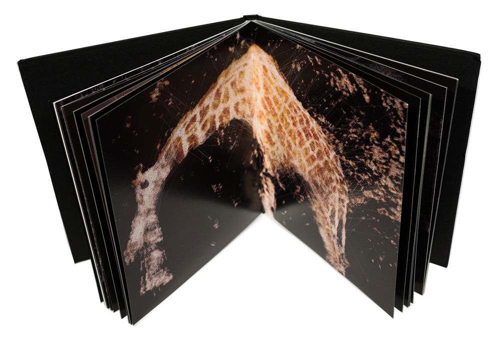 Novi_sad & Ryoichi Kurokawa collaborate to present the Sirens collection & printed book