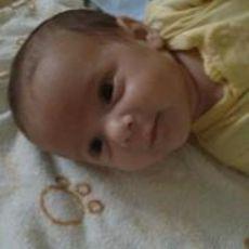 Carlos Armando profile picture