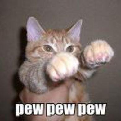 Cat Grant profile picture