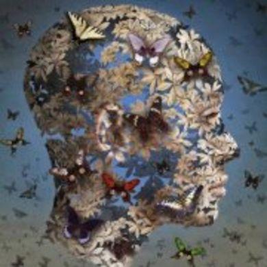 Julie West profile picture