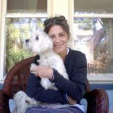 Toby Fox profile picture