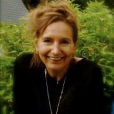 Lieve De Velde profile picture
