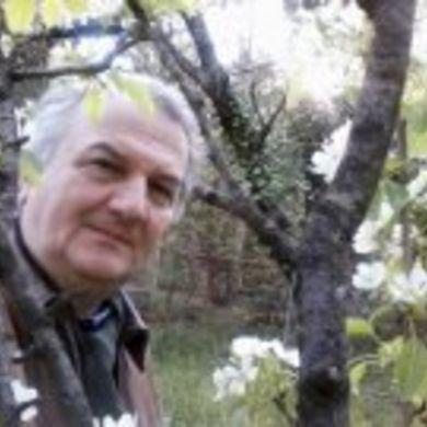 Andrej Tisma profile picture