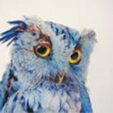 Moises Hernandez profile picture