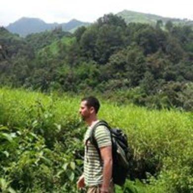 Roberto Coello profile picture