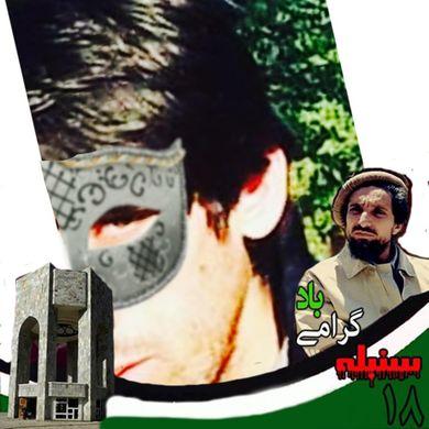 Sharif Noori profile picture