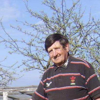 Vidas Kucinskas profile picture